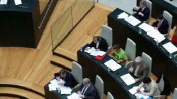 Milagros Hernández, esta mañana en el Pleno, antes de la gran noticia